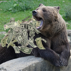 A Bear Coughing Up Cash