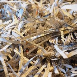 Shredded documents